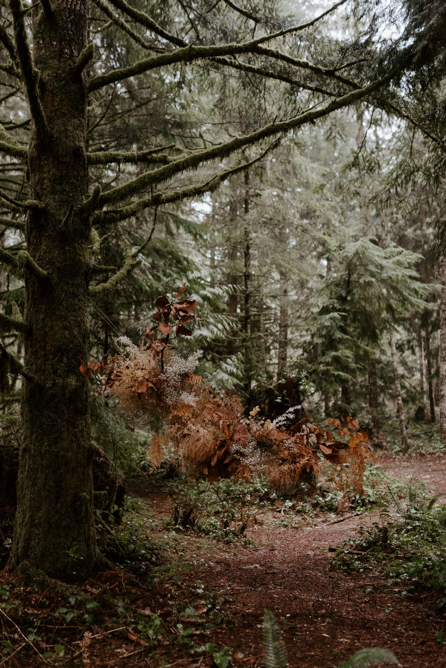 The Woodlands House Sandy Oregon Elopement Portland Elopement Photographer PNW Adventurous Elopement Anais Possamai Photography 011
